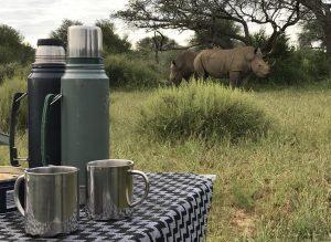 Einsteiger Namibia Rhino